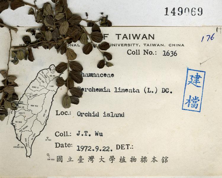 台湾直男教练小叶